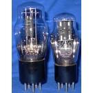 NOS- 485 (ST Bulb)